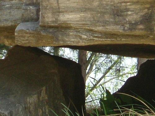 Close-up of a Dolmen