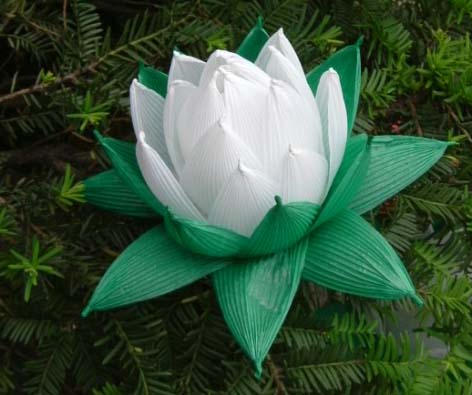 Artificial Lotus on an Evergreen Shrub