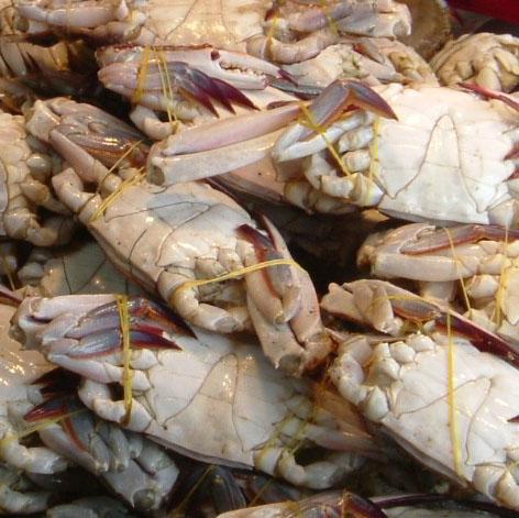 Bound Crabs